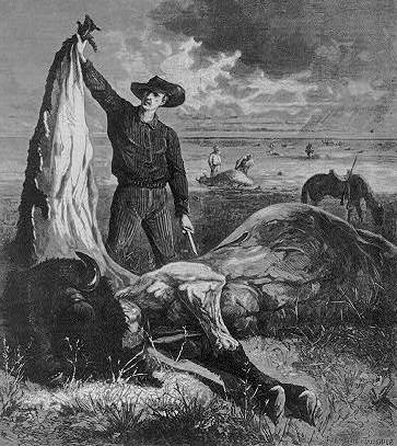 Slaughtered for the hide, Harper's Weekly 12th December 1874